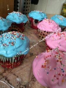 coloredcupcake_final