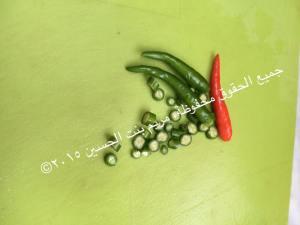fish_3aradeeb_6